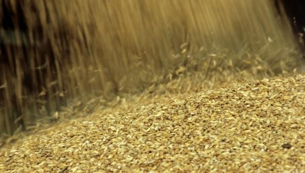 Турция и Египет лидеры по покупкам российского зерна