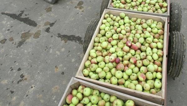европейские аграрии повторят судьбу молдавских