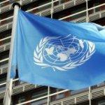 Тысячи беженцев получили «продуктовые ваучеры» на Донбассе