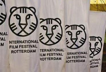 три фильма получили главный приз