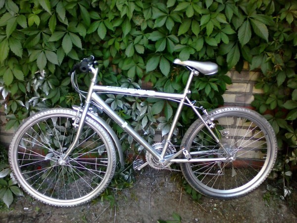 украли пять велосипедов