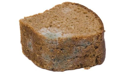 плесень на хлебе